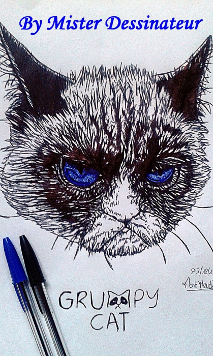 Grumpy Cat by MisterDessinateur45